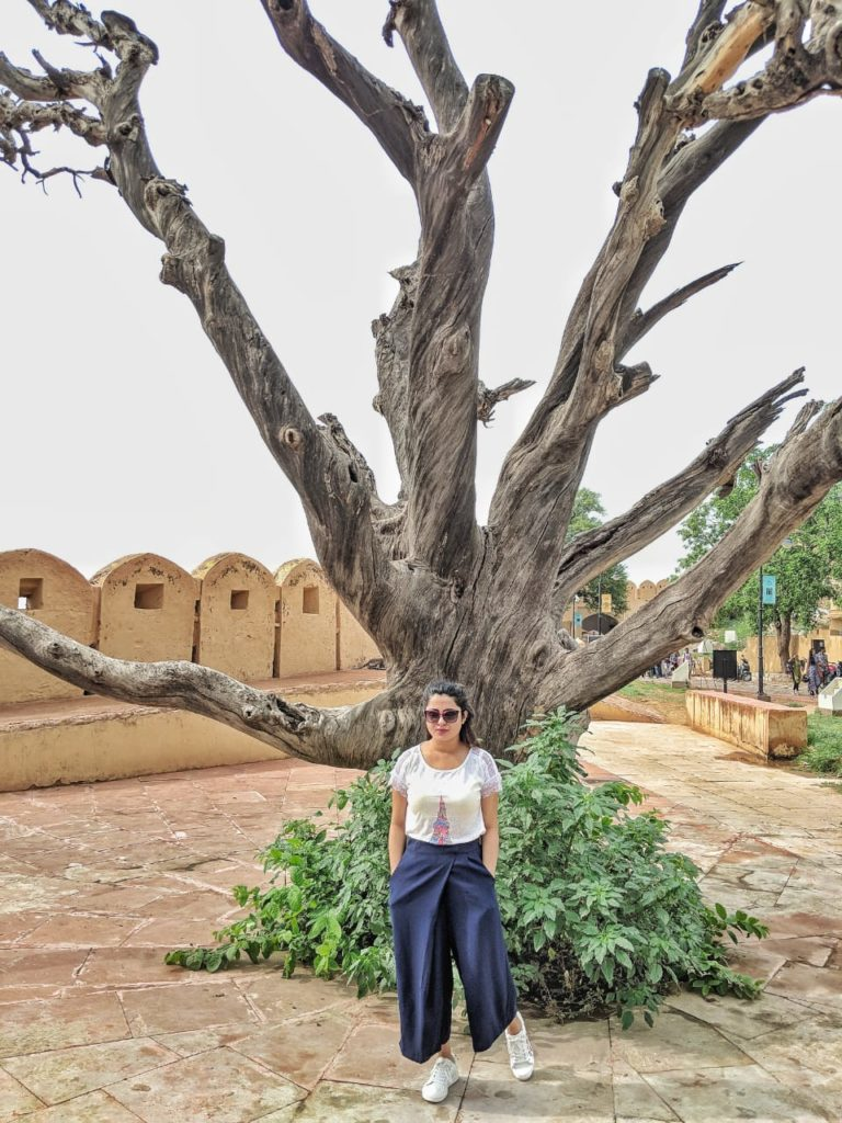 What I wore to Jaipur , Jaipur Lookbook, Elle Boutique India